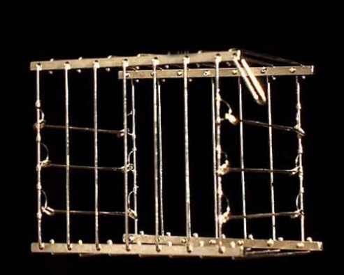 Vanishing Bird Cage - Metal
